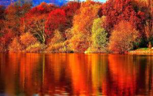 autumn-07